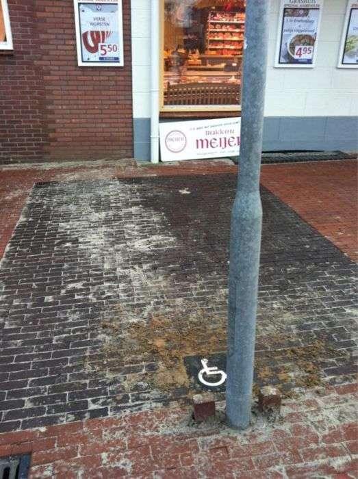 Курйози на дорогах в Нідерландах (25 фото)