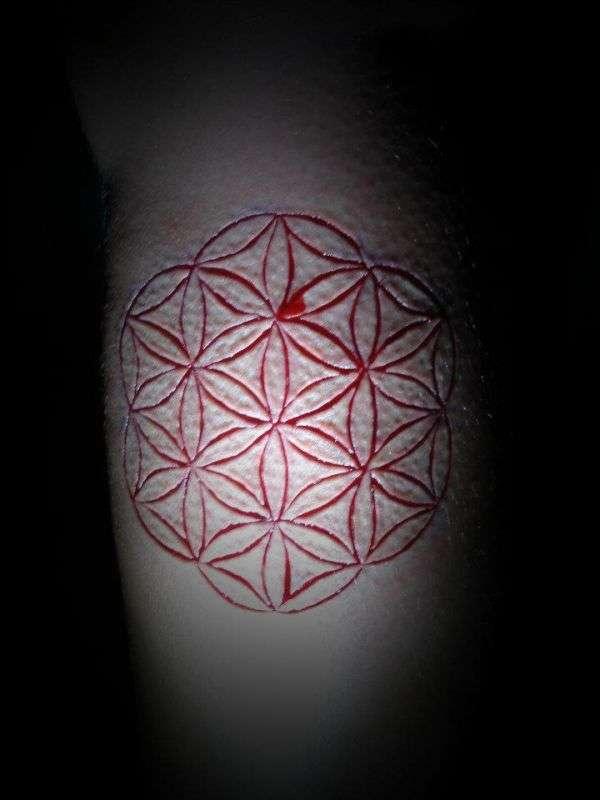 Моторошні татуювання і шрамування (21 фото)
