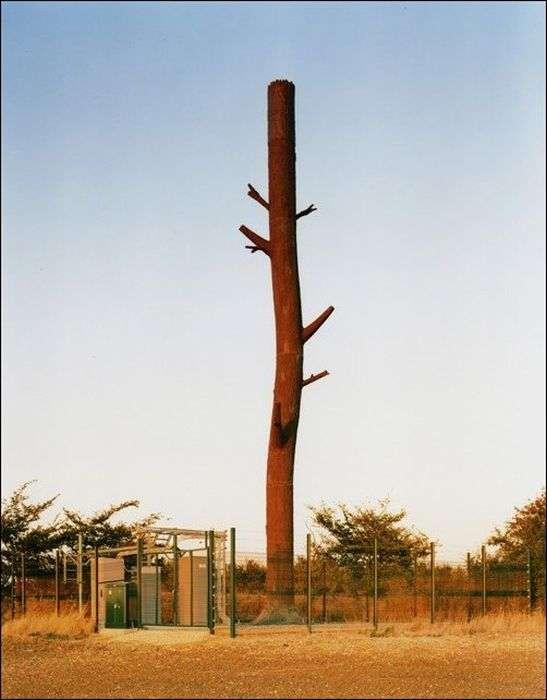 Як за кордоном маскують вежі стільникового звязку (22 фото)