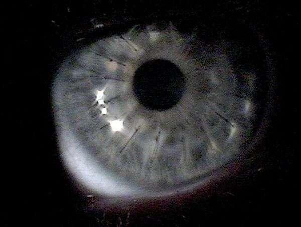 Тюнінг очей (10 фото)