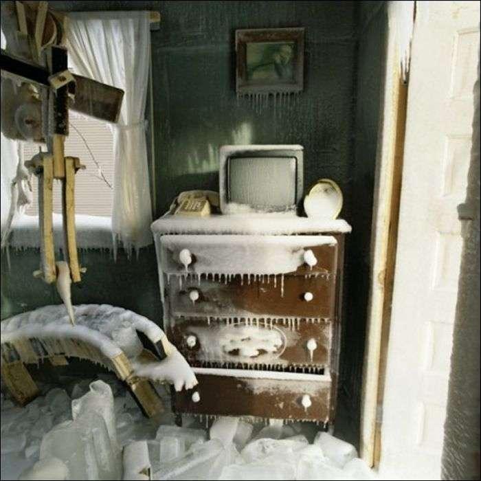 Забули закрити двері на зиму (5 фото)