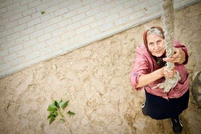 Спортивна бабуся (7 фото + відео)