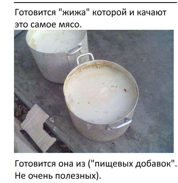 Як наживаються на курячому мясі (3 фото + текст)