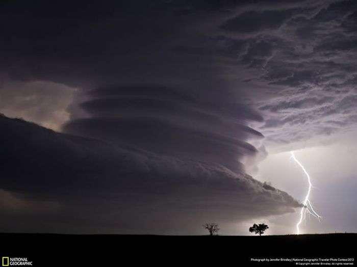 Чарівні знімки від National Geographic (50 фото)