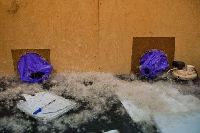 Ручне виробництво зимових пуховиків (50 фото)