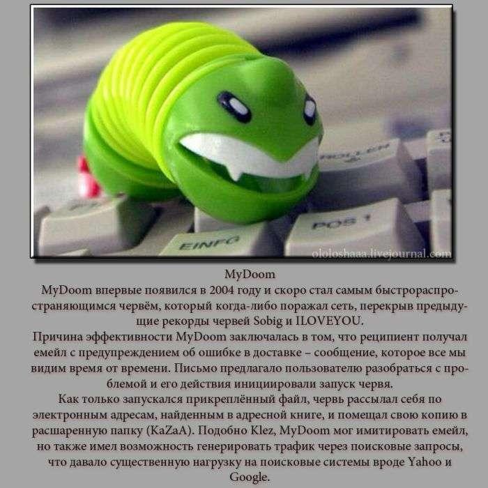 ТОП-5 компютерних вірусів (5 фото)