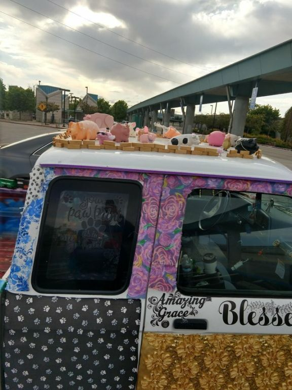 20 невероятных ситуаций, с которыми автомобилисты столкнулись на дороге Юмор,картинки приколы,приколы,приколы 2019,приколы про