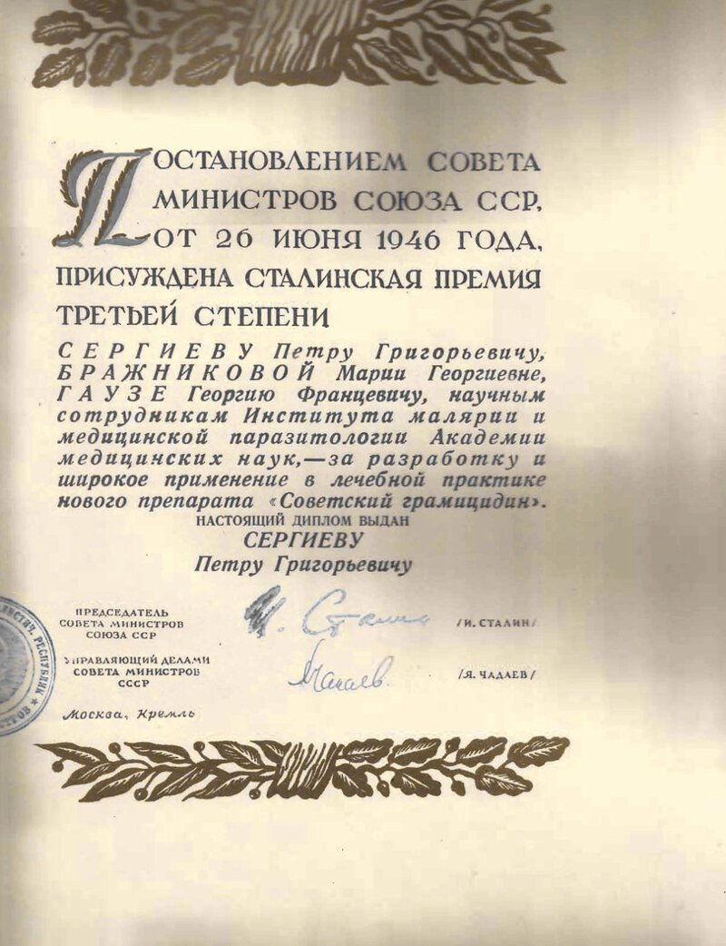 Как советский антибиотик спас сотни тысяч солдат   Интересное