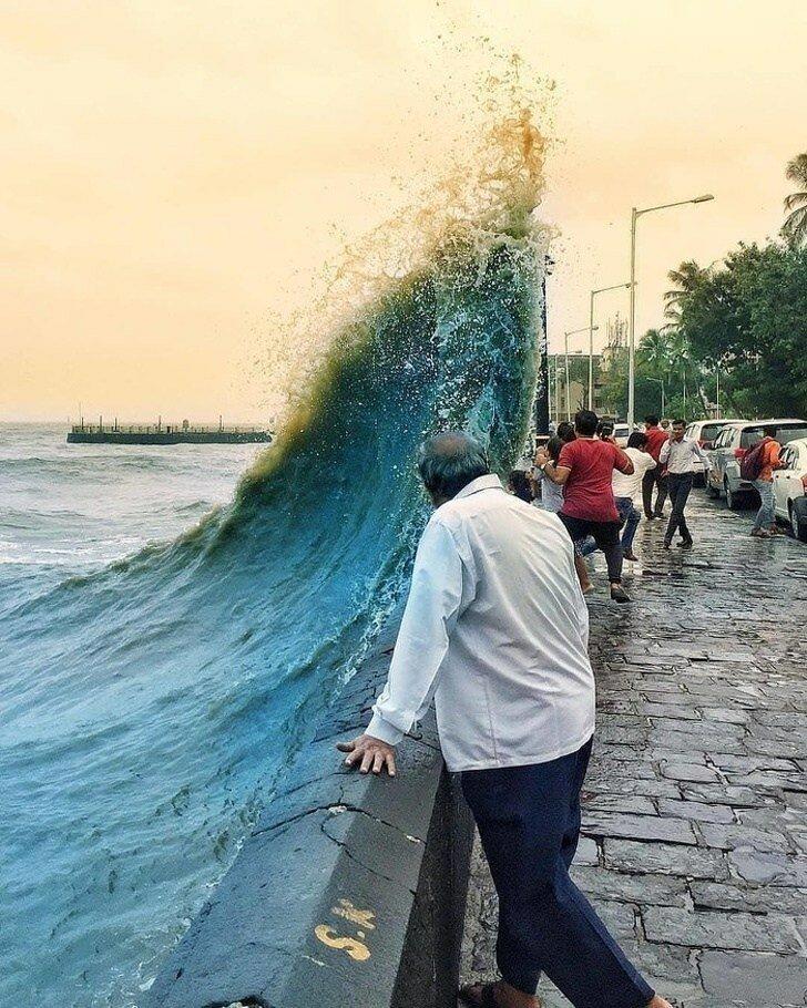 20 неожиданных фотографий, ставших шедеврами благодаря фону Интересное
