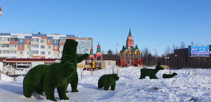 Шёл 128-й день декабря: честный рассказ и разоблачение мифов о Крайнем Севере