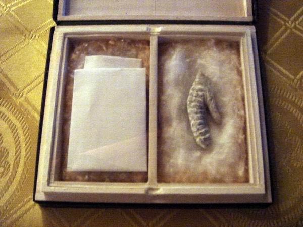 Самые странные вещи, найденные под кроватью находки